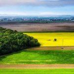 Tour de 3 días: Eslavonia y Barania